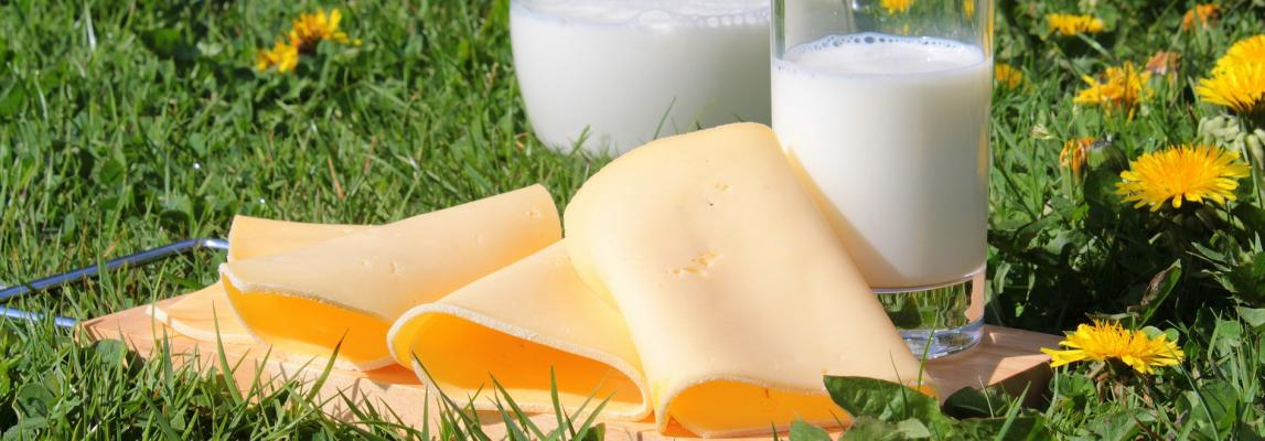 sensory quality of milk products